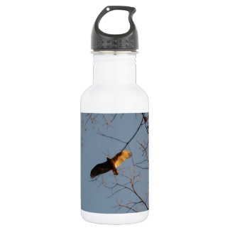 North American Buzzard coming home to roost 18oz Water Bottle