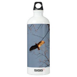 North American Buzzard coming home to roost SIGG Traveler 1.0L Water Bottle