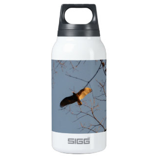 North American Buzzard coming home to roost Thermos Water Bottle