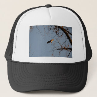North American Buzzard coming home to roost Trucker Hat