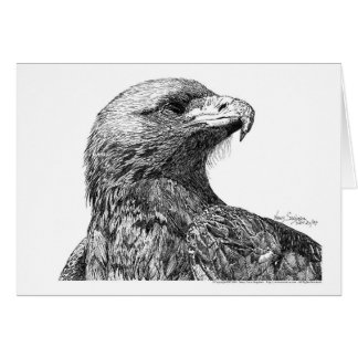 North American Eagle Pen and Ink Card
