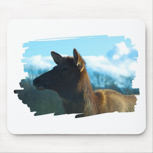 North American Elk Mouse Pad