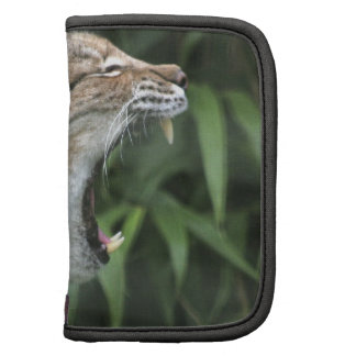 North American Lynx Wallet Folio Planners
