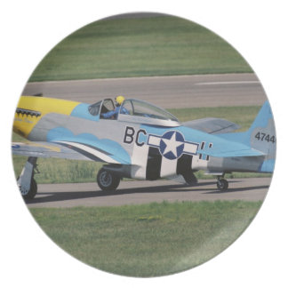 North American P-51 D Dazzling Donna on the Melamine Plate