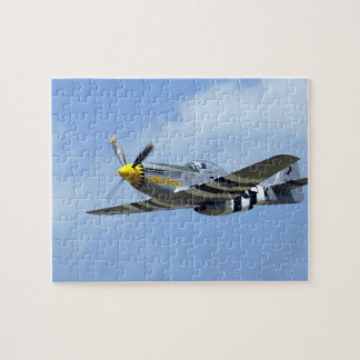 North American P-51D Mustang, Little Horse Puzzle