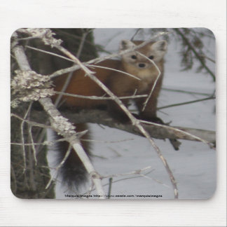 North American Pine Marten Mousepads