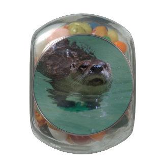 North American River Otter Glass Candy Jar