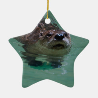 North American River Otter Double-Sided Star Ceramic Christmas Ornament