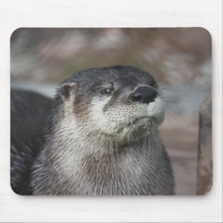 North American River Otter Mousepad