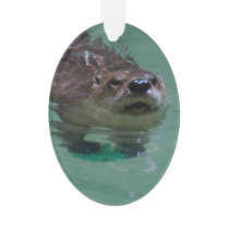 North American River Otter Ornament