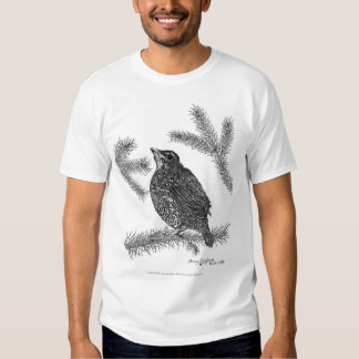 North American Robin Pen and Ink T-Shirt