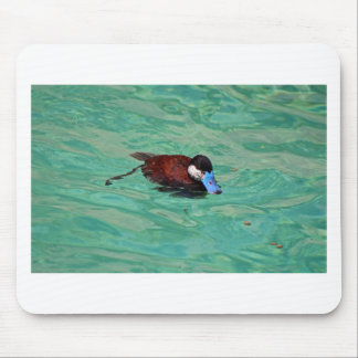 North American Ruddy Duck I Mouse Pad