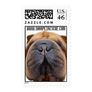 North American Shar-pei Rescue stamp
