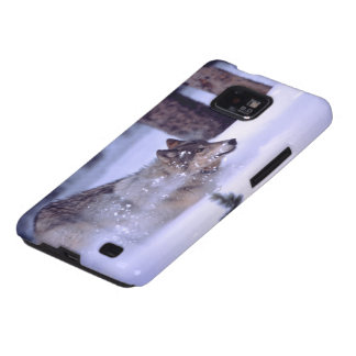 North American Timber Wolf in Snow Samsung Galaxy SII Case