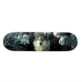 North American Timber Wolf in Snow Skateboard Deck
