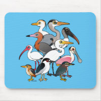 North American Waders Mousepad