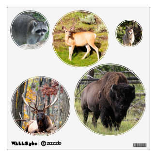 North American Wildlife photos Wall Decal