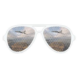North Atlantic Aviator Sunglasses