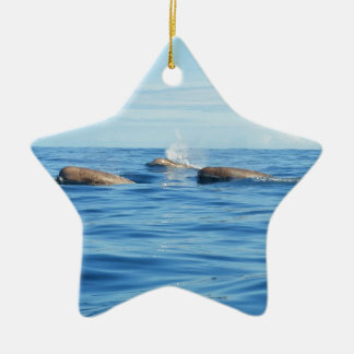 North Atlantic Bottlenose Whales Double-Sided Star Ceramic Christmas Ornament