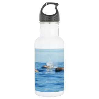 North Atlantic Bottlenose Whales Stainless Steel Water Bottle