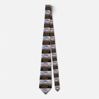 North Atlantic Neck Tie
