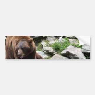 North Carolina Bears Bumper Sticker