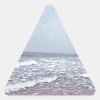 North Carolina Coastal Photography Triangle Sticker