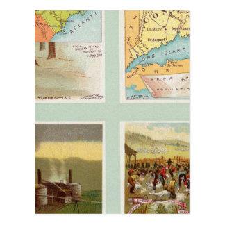 North Carolina, Connecticut, West Virginia, Ohio Postcard