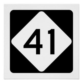 North Carolina Highway 41 Poster