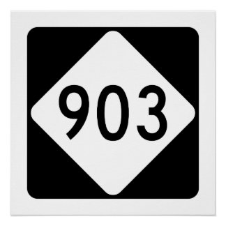 North Carolina Highway 903 Poster