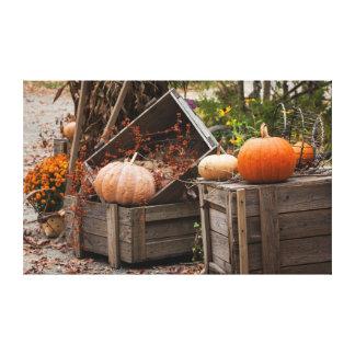 North Carolina, Linville, autumn pumpkins Canvas Print