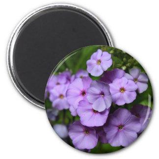 North Carolina Phlox Flowers 2 Inch Round Magnet