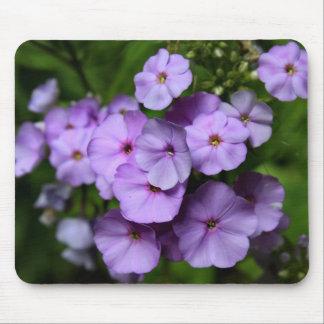 North Carolina Phlox Flowers Mouse Pad