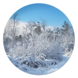 North Carolina Winter Snowfall Landscape Plate
