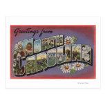 North CarolinaLarge Letter Scenes Postcards