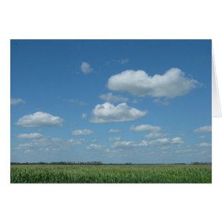 North Dakota Corn Field Card