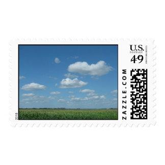 North Dakota Corn Field Postage
