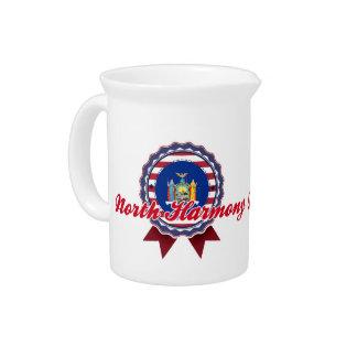 North Harmony NY Beverage Pitcher