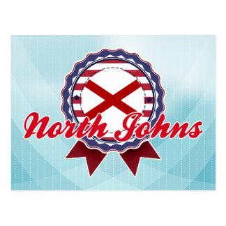 North Johns, AL Postcard