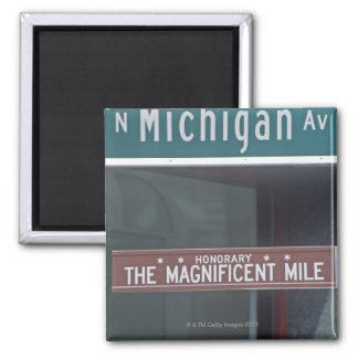 'North Michigan Avenue and The Magnificent Mile Magnet