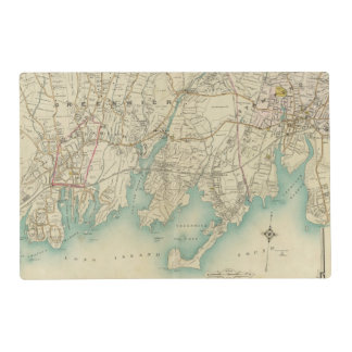 North New York City 7 Laminated Place Mat