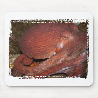 North Pacific Giant Octopus Mouse Pad