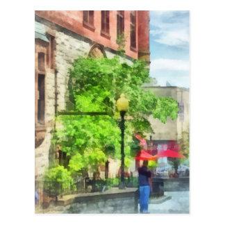 North Pearl Street, Albany, NY Postcard