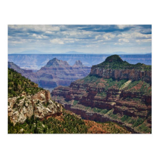 North Rim Gran Canyon - Grand Canyon National Postcard