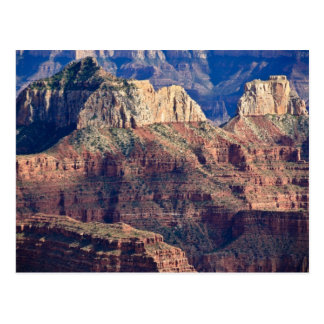 North Rim Grand Canyon - Grand Canyon National Postcard