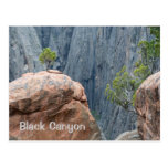 North Rim of the Black Canyon Post Card