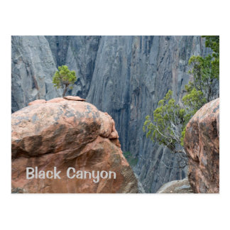 North Rim of the Black Canyon Postcard