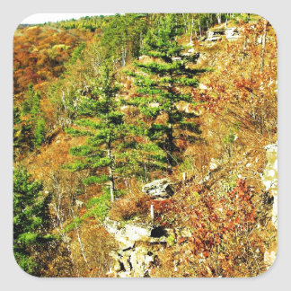 North Rim view Pa Grand Canyon by ArtRave Square Sticker
