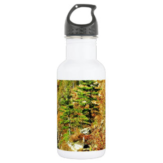 North Rim view Pa Grand Canyon by ArtRave Water Bottle