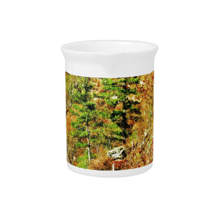 North Rim view Pa Grand Canyon by Ave Hurley Beverage Pitcher